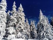 Zimní sněhová nadílka nad chalupou
