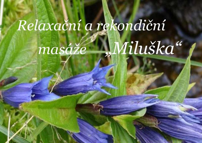 Massage Miluška