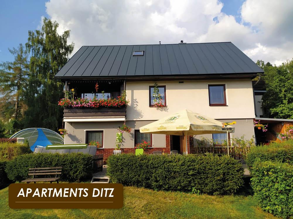 Apartments DITZ