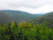 Výhled nad chalupou na údolí směrem na Harrachov
